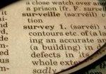 survey-preview
