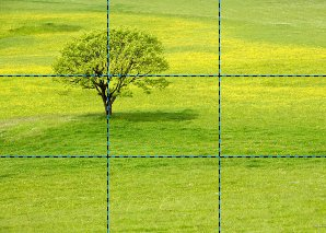 Rule of Thirds - Tree on Power Point