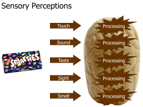 slide-assertion-titles-001
