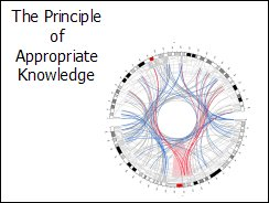 PowerPoint - Principle of Appropriate Knowledge